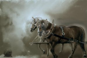 Horses in the war by playart-PSD