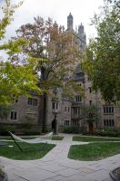 Yale University Stock 53 by FairieGoodMother