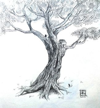Life of a Tree by Khanorn