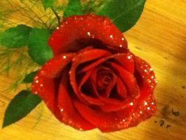 Red rose by LubzAnime