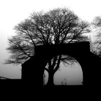Mist: arch+tree1 by Coigach