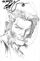 Wolverine by E-BAS by duckness