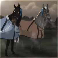 .:two champions:. by BRls-love-is-MY-Live