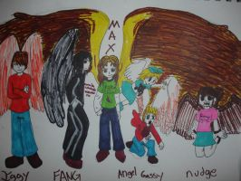 Maximum Ride by Blue-Fire-likes-pie