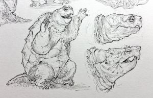Snapping Turtle Studies by Rowkey