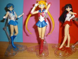 SH Figuarts Amy Serena Rei by Aioros87