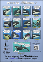 Who is Shamu? Poster by Okura