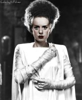 Bride of Frankenstein by ziegfeldfollies