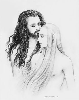 Thorin and Thranduil by Develv