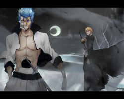 Bleach : Hollow Rivalry 2 by kage-chan