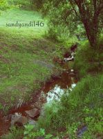 Back to the Shire by sandyandi146