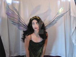 Large Double Fairy Wings by FaeryAzarelle
