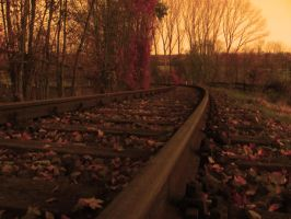 Abandoned rails by Tirrel