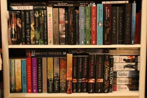Re-Arranged Bookcase by Shadows-r-Light