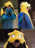 Jake the Dog Hood by bitesandkissesX