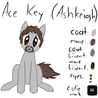 Ace Key by CyberwormXT