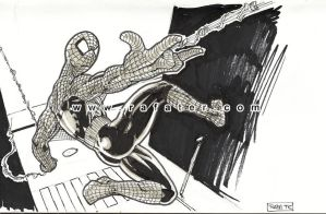 spiderman sketch by rafater