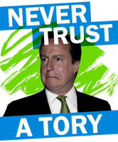 Distrust Tories by Party9999999
