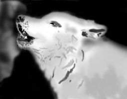 wolf howling by me3xR