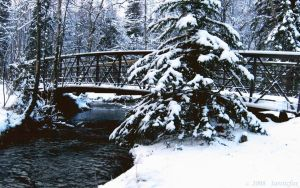 BRIDGE OVER ICY WATER by 1arcticfox