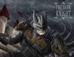 KNIGHT BATMAN by pauldesu