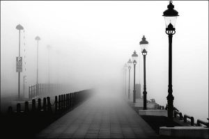 Foggy Day by Photola