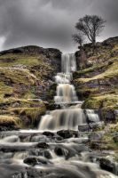 Cow Close Gill by crowthius