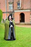 Tudor Outfit by VickitoriaEmbroidery