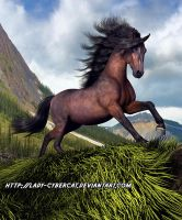 Rocky Mountain Stallion by lady-cybercat