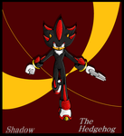 ::Speed Paint::Shadow -  100% MS Paint:: by AnimalCreation