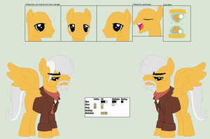 War Doctor Ref. Sheet by PrimeFighterQue