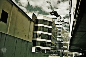 Leap .ii by Fueled-By-Freedom
