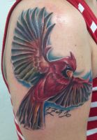 Cardinal by Johnny Jinx by BrokenCloverTattoo