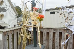October 2014, Halloween At the Local Farm Stand 2 by Miss-Tbones