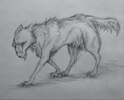 Wolf Sketch by Eighth-Reaper
