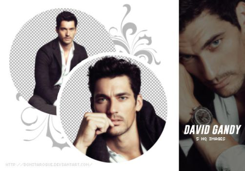 PACK PNG 29 // DAVID GANDY by Bonitarogue