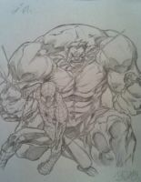 Hulk and Spider-Man by DeVianThaI