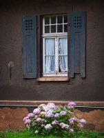 old window and lovely flowers by Nexu4