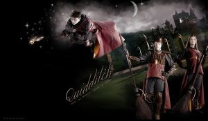 HARRY POTTER QUIDDITCH PRACTICE by VaL-DeViAnT