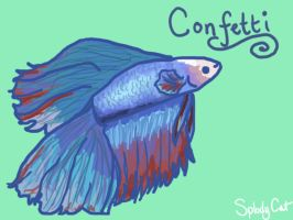Betta Fish: Confetti by myexplodingcat
