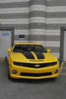 CAMARO  BUMBLE BEE CAR  S T O C K by Theshelfs