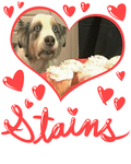 the cupcake dog is named stains by ItsAndyTime