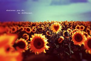 Different. by iNeedChemicalX