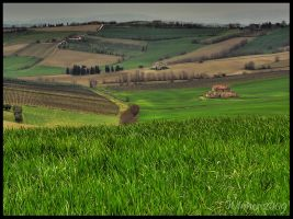 Countryside HDR by W-i-nn-e-R