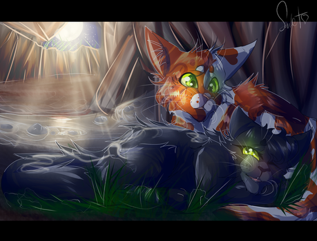 Hollyleaf and Fallen Leaves (Warrior Cats) by WarriorCat3042