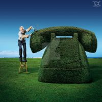Topiary by designcartel