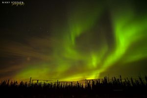 The Northern Lights by djniks97