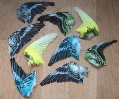 Budgie Wings by RoanSerpentia