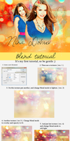 Blend tutorial by Cornelie20