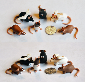 Set of 6 Dime Rats ~ Shi1227 Commission by nEVEr-mor